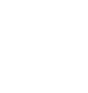 CP Landscaping Greenville SC