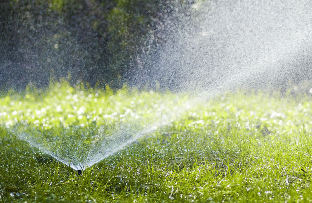 Irrigation Systems Greenville SC